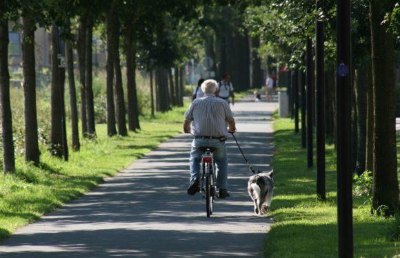 O rower trzeba dbać
